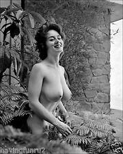 1966 Sabine Demois Topless Nude Outdoor Pose   8  x  10  Photograph