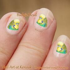 Budgie, cotorra, periquitos, Arte en Uñas, Juego De 24 calcomanías de uñas de arte pegatinas de aves