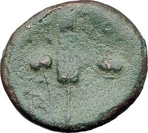 300-100BC-Original-Genuine-Ancient-GREEK-CITY-Coin-ARTEMIS-GRAIN-EAR-Rare-i61366