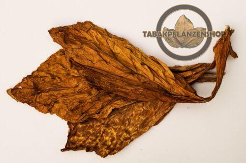 Tabak,Tabakpflanzen Tabakblätter /'/'Burley/'/' 10 Kg Premium Qualität