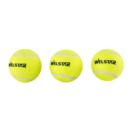 3x Bällen Welstar Tennisbälle Tennisball