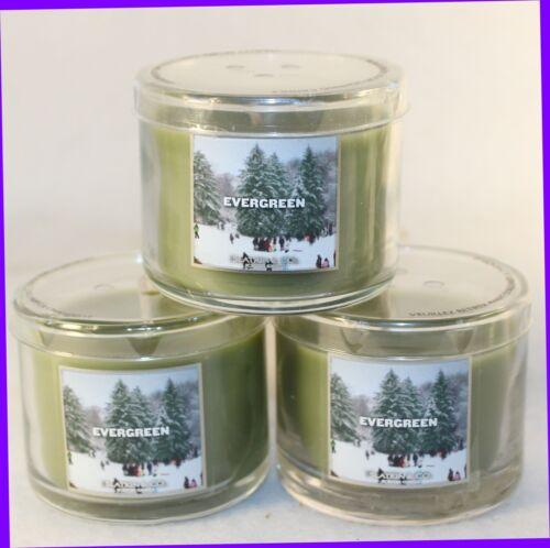 3 Bath /& Body Works EVERGREEN 1.3 oz Mini 1-Wick Candles WINTER