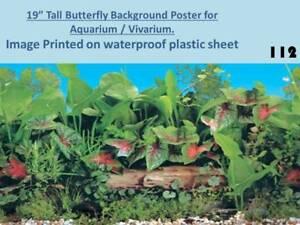 """19"""" Tall Greco Roman Background on Plastic Poster for Aquarium Vivarium 113"""