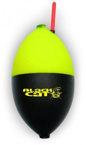 BLACK Cat Buoy Float pose wallerpose Wels pose