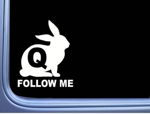 Qanon White Rabbit Follow Me M390 6 inch Sticker Decal Q Anon Patriot