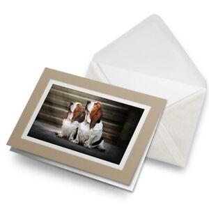 Greetings-Card-Biege-Bassett-Hound-Puppy-Dog-Couple-16330