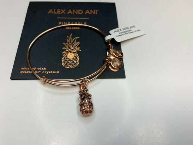 Alex and Ani Charity by Design Completely Blessed Bangle Bracelet CBD13CBRG