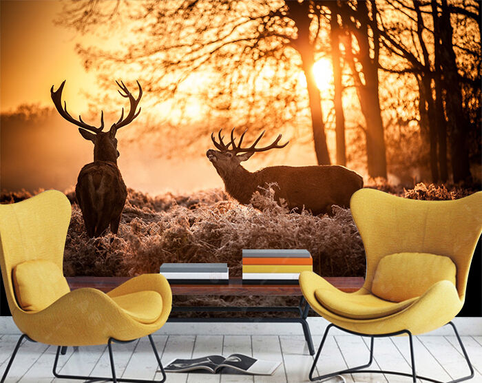 3D Sunset Elk Animal 225 Wall Paper Wall Print Decal Wall AJ WALLPAPER CA