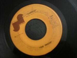 THE-IMAGE-BETCHA-DIDN-039-T-KNOW-45-RECORD-SURPRISE-JANUS-J-194