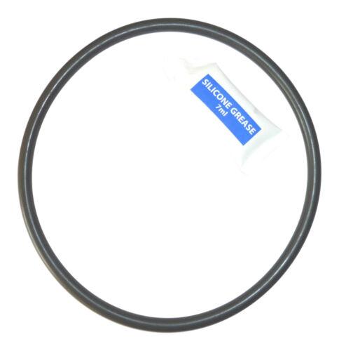 4404180201 pour Astralpool Cantabric Sable Filtre Torique Joint D/'Etanchéité
