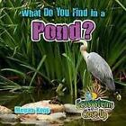 What Do You Find in a Pond? by Megan Kopp (Hardback, 2016)