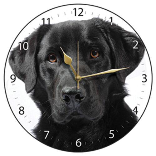 Black Labrador Dog on White Dial Wall Clock