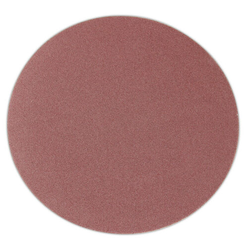 10 Inch PSA Aluminum Oxide Sanding Disc 10 Pack Self Adhesive Peel and Stick