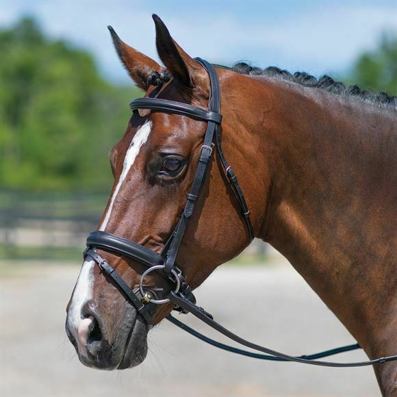Premier® Dressage Snaffle Bridle with Crank FREE SHIPPING