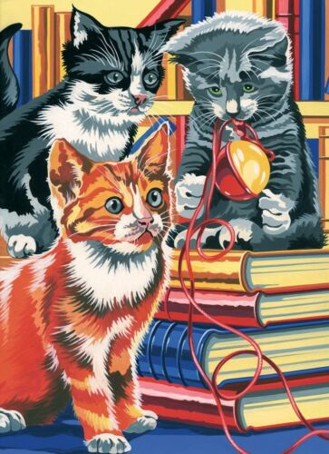 OVP 30 cm x 22 cm Malen nach Zahlen Bücherkatzen Katze Katzen Tiermotiv Neu