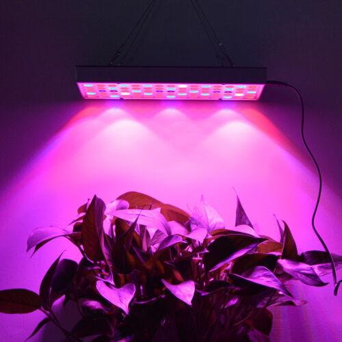 25W 45W Full Spectrum 75 144 LED Grow light Panel for Indoor Plants Flowers