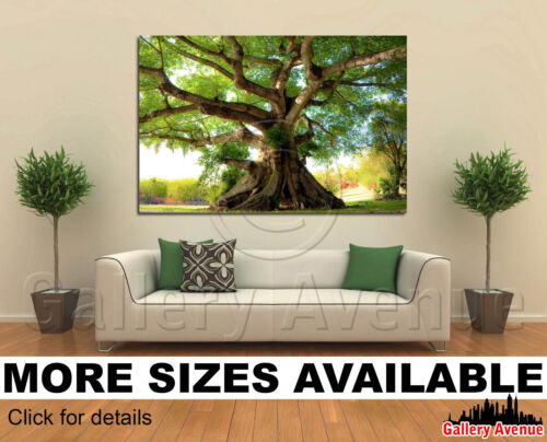Wall Art Canvas Picture Print Peaceful tree 3.2