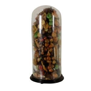Composizione-di-Frutta-Cera-Campana-vetro-soffiato-Antiquariato-fine-039-800