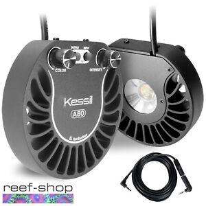 2x-Kessil-A80-Tuna-Blue-LED-Lights-amp-Link-Cable-Bundle-15-Watt-Nano-Reef-Lights