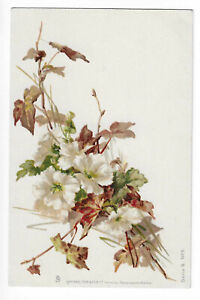 ILLUSTRATION SIGNED CATHARINA KLEIN FLOWERS
