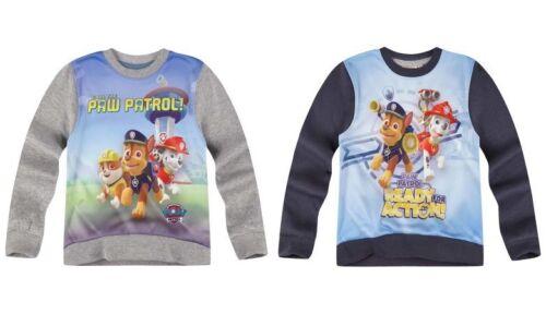 Sweatshirt Paw Patrol boys grey navy 3-8 year