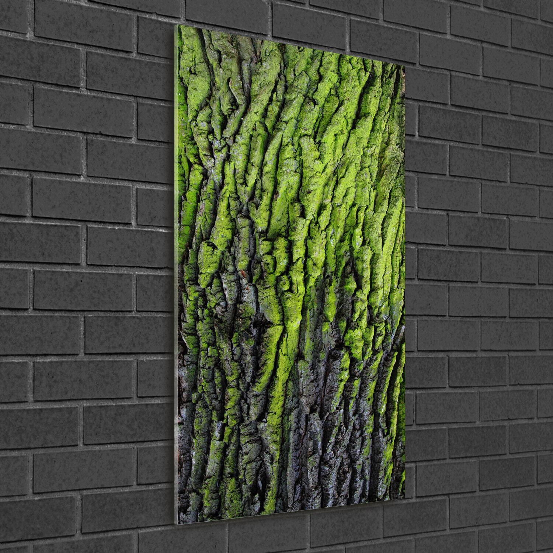 Wandbild Druck auf Plexiglas® Acryl Hochformat 50x100 Baum Rinde