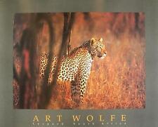 ART WOLFE Leopard poster stampa d'arte immagine 81x66cm-SPEDIZIONE GRATUITA