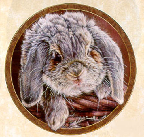 Sweet Cheeks by Vivi Crandall Bradford Exchange Plate Bunny Tales Collection