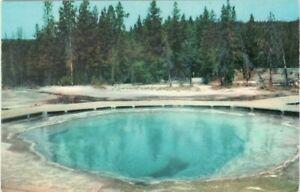 Morning-Glory-Pool-Yellowstone-Park-Wyoming-Vintage-Unused-Postcard-A112
