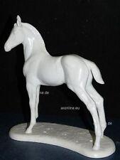 +# A015460_10 Goebel Archivmuster, Bisquitporzellan, Pferd stehend, 32-356, TMK6