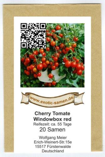 Balkontomate Buschtomate Windowbox red 20 Samen rote Cherry