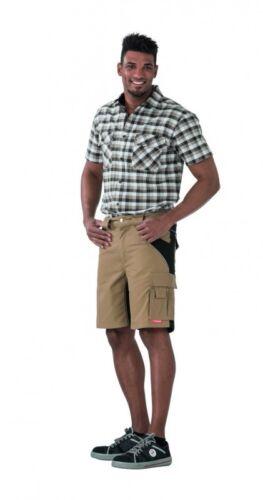 PLANAM Plaline Shorts Bermuda kurze Hose Arbeitshose Freizeithose Berufsshort