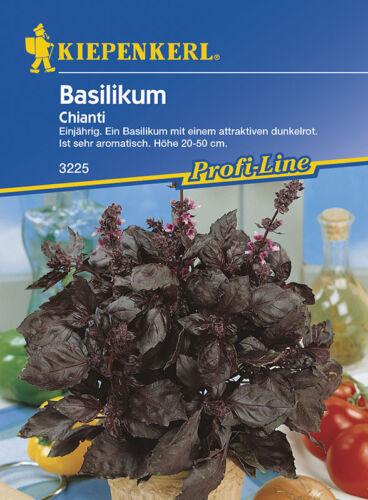 MHD 01//22 rotblättrig einjährig Ocimum Kiepenkerl 3225 Chianti Basilikum