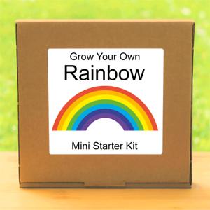 Grow Your Own Coleus Rainbow Plant Kit Indoor Windowsill Gardening Gift Set