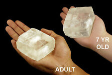 """Optical Calcite Rhomb 3"""" 7-12 Oz Healing Crystals and Stone Chakra Metaphysical"""