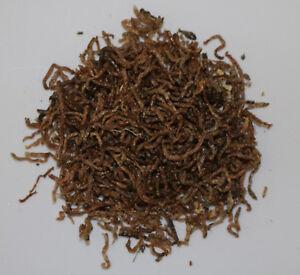 Rote-Mueckenlarven-FD-1000-ml-getrocknetes-Zierfischfutter-Naturfutter-Zierfische