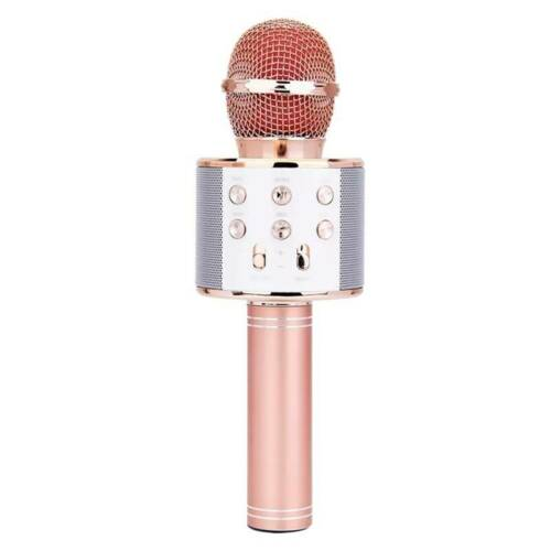 Karaoke Microphone Toy for Kids Adlut with Wireless Bluetooth /& Recorder HOT