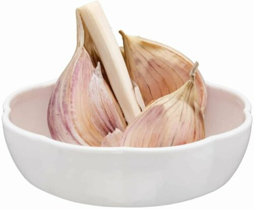 Joie Clearly Fresh Garlic Ventilated Storage Pod Container