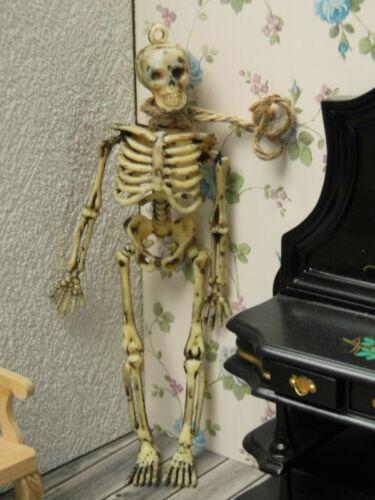 Puppenstube!! SKELETT-Miniatur mit Strick um d.Hals,für Klassenzimmer,Grusel