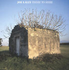 There to Here by Joe Lally (CD, Oct-2006, Dischord Records)