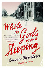 While the Gods Were Sleeping by Erwin Mortier (Paperback, 2015)