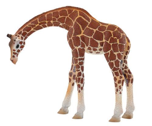Bullyland 63668 Giraffa 13 cm Animale Selvaggio