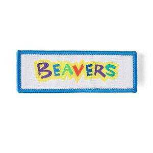 Beaver-Scout-Fun-LOGO-badge-NEW