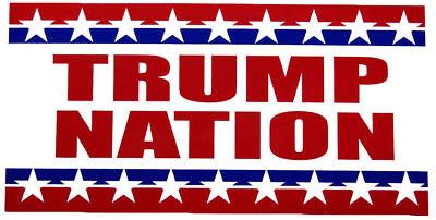 "Trump Drain The Swamp Blue Vinyl Decal Bumper Sticker 3.75/""x7.5/"""
