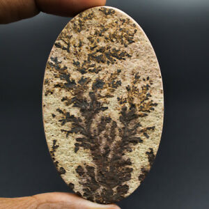 Cts-175-95-Natural-Psilomelane-Dendritic-Limestone-Oval-Cabochon-Loose-Gemstone