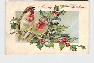 PPC-POSTCARD-MERRY-CHRISTMAS-BIRDS-HOLLY-EMBOSSED