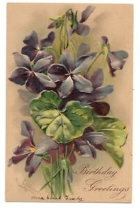 83020-LOVELY-VINTAGE-A-S-C-KLEIN-FLOWER-POSTCARD-VIOLETS-BIRTHDAY-GREETINGS-1907