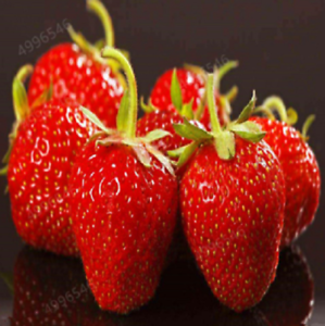 50pcs Strawberry Fruit Seeds