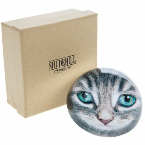 Cat Kitten Portrait Head Design Decorative Dome Glass Paperweight  Gift Boxed