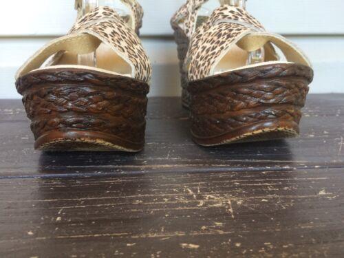 Wedge Dames Sandalen 9 Sz Sbicca Print Lizzy Nieuw80 Leopard Strappy Bruin 0OPwkn